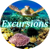 Excursions include in your package