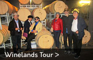 Guided wine celler tour with cheese & wine tasting / pairing