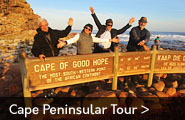 Guided tours down the Cape Penisular of South Africa