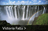 Victoria falls is 100m high
