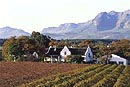 Stellenbosch winelands - South African coach tour