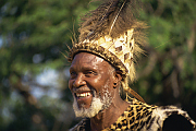 Zululand Chief