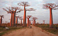 Maps of Madagascar - Madagascar vacation packages